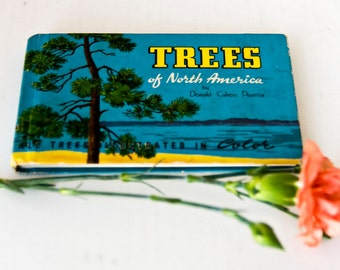 Field Guide Book Trees of North America, Mini Botany Nature Gift Published 1934