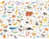 Animals, Print, A3