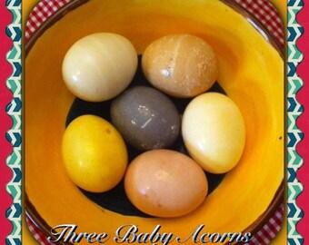 Natural Egg Dyeing Kit - Herbal