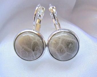 925 Sterling Silver Leverback Natural Gemstone Cabochon Earrings - Fossil