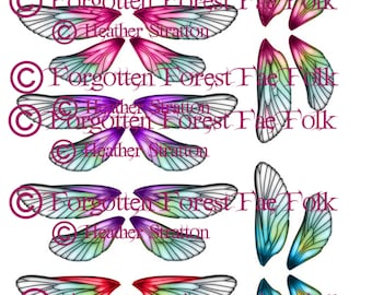 Double fairy wings in assorted colours