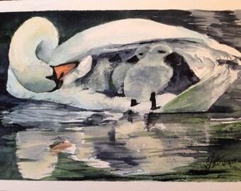 Swan bus