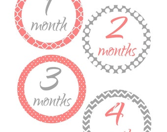 Baby Month Stickers, Coral and Gray, Monthly Stickers, Monthly Baby Sticker, Baby Shower Gifts, Baby Month Sticker Girl, G55