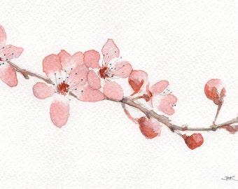 Aquarelle painting art print, cherry blossom, flower, modern decoration, fresh style