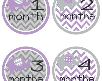 Baby Milestone Stickers - Baby Month Stickers - Purple Elephants (320)