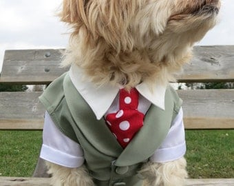 Complete Custom Dog Wedding Vest Tuxedo