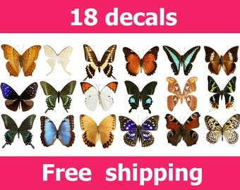 D Butterfly Wall Decals Etsy CA - Butterfly wall decals 3d