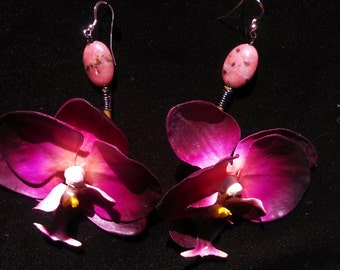 Passion Vanda Orchid Earring with Accent