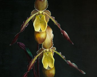 "Giclee print of exotic Lady Slipper orchids. Titled ""Sorcerer's Apprentice""."