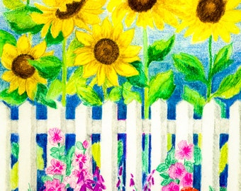 Cottage Garden With White Pickett Fence & Sunflowers - Nature Drawing Reproduction Fine Art Print or Wrapped Canvas for Home Decor.