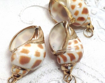Shells Gold Trimmed Three - Pendant Supply for Jewelry or Embellishment - Caramel Butterscotch - DIY Earrings Supplies Seashore Beach Theme