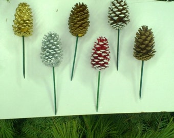 "Loblolly Pine Cones with 6"" Pick"