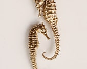Golden Seahorse Print - 11x14 -  Home Decor - Photography