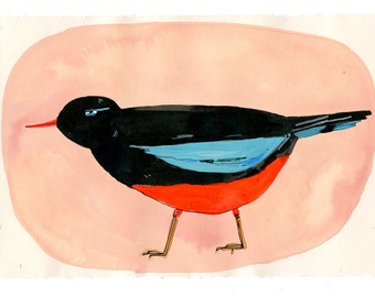 Red, black and blue bird, painting on paper