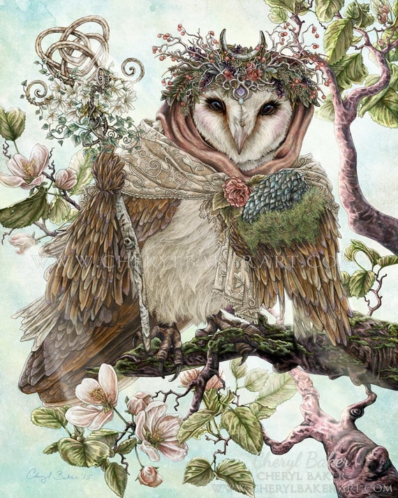 Owl Decor Owl Art Barn Owl Owl Wall Art By Cherylbakerart