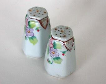 Vintage Floral Salt and Pepper Shaker Set