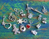 Sterling Silver Charm Collection