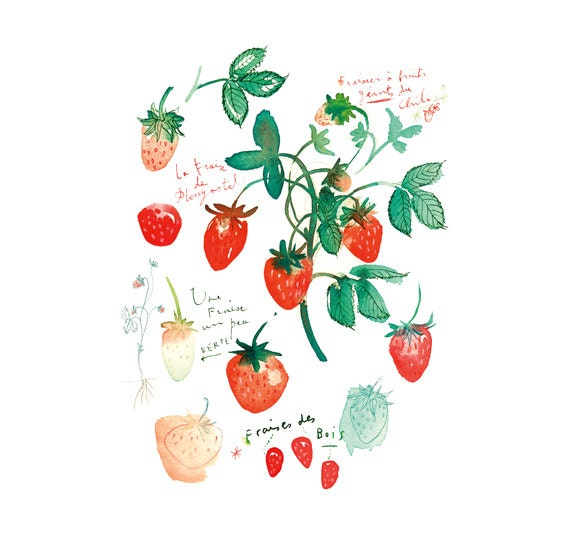 Strawberry print, Kitchen art, Watercolor strawberry painting, Fruit print, Red wall decor, Botanical print, Food poster, 8X10 Kitchen decor