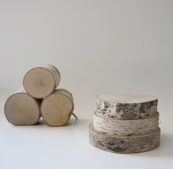 Sale - natural white birch wood slices for diy projects - set of 3