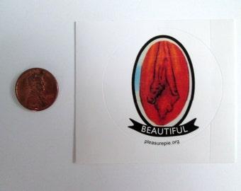 Beautiful Vaginas Sticker Set