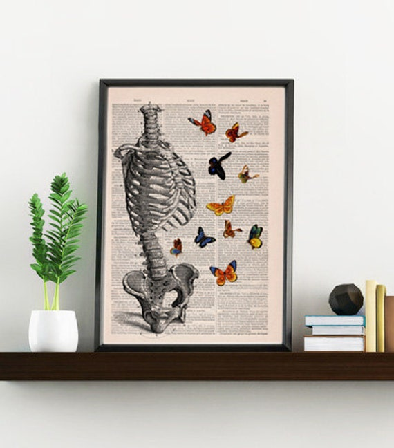 Summer Sale Human Skeleton Torso full of butterflies. Anatomy Print gift - Anatomical decoration- science & anatomy art, SKA095