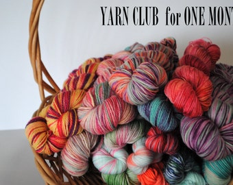 One Month Yarn Club