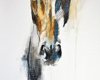 "12"" x 16"" / 16"" x 24"" - ""Alert VIII"" Photo print of a Horse Head Drawing"