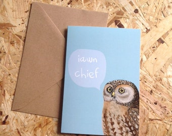 Iawn Chief! Welsh Hello Blue Owl Eco Friendly Art Greeting Card