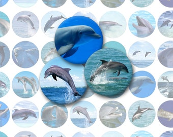 Dolphin Printable 1-Inch Circles / Bottlecap Images / Dolphins Digital Collage Sheet / Marine Mammals / Ocean Fish / Instant Download