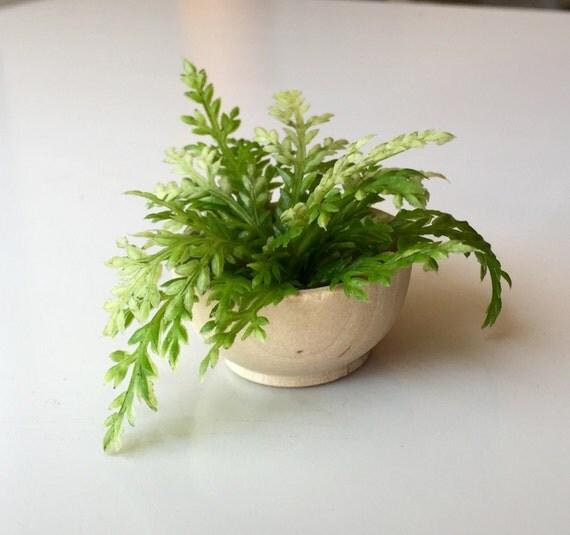 chelle 1 6 bol en bois foug re plante pour maison de poup e. Black Bedroom Furniture Sets. Home Design Ideas