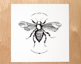 Wasp    12 x 12