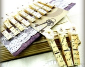 Set of 12 French script shabby chic decorative vintage parchment tan ivory rustic wedding photo display decoupage standard clothes pin  tagt
