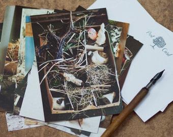 Vintage Christmas Toys Postcard, Holiday Art Print, Christmas Card, Forest Animal Postcards