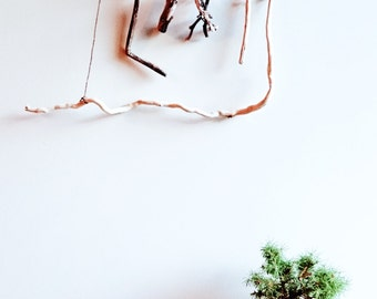 Driftwood mobile hanging art from Australian beach wood - One of a kind