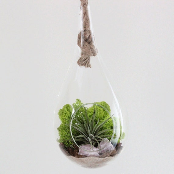 Hanging Rope Terrarium Kit Air Plant + Rose Quartz