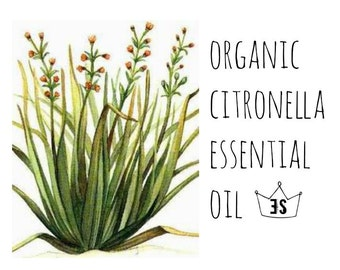 Organic Citronella Essential Oil - Pure Citronella Essential Oil - Natural Insect Repellent - Natural Bug Spray - Organic Essential Oil