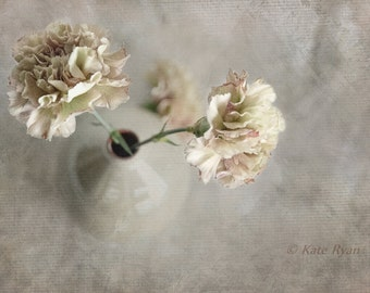 Flower Photography, Neutral Decor, Carnations, Cream Beige Tones, Pastel Floral Print, Dreamy, Bedroom Decor, Bath Decor, Spa Decor, Office