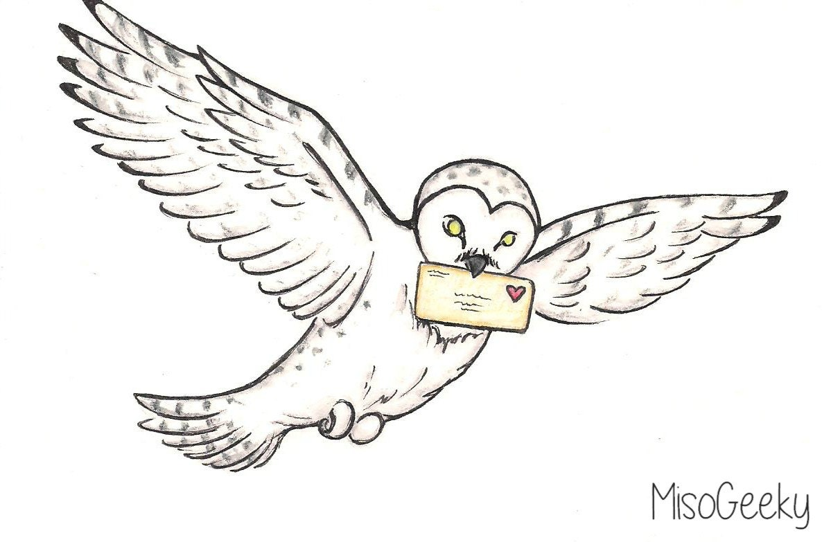 Love Letter Delivery Harry Potter Hedwig Drawing by MisoGeeky