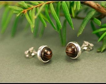 Wooden studs, Sterling silver stud earrings with brown wood, Wooden stud earrings, Small earring studs, Small brown stud earrings, Simple