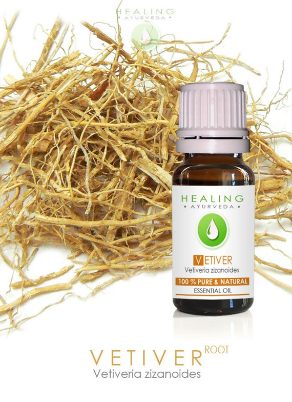 Vetiver essential oil- Vetiver root oil- khus khus- perfume fixative, Spiritual oil, Ayurveda essential oil, Root oil, Aromatherpay, Massage