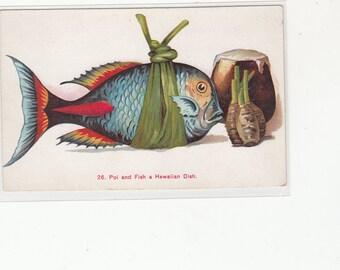 Antique Postcard Poi And Fish,A Hawaiian Dish, Very Artistic,Jas Steiner