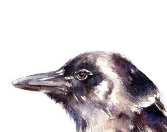 Raven Watercolor Painting Art Print, Bird Watercolour Art, Wall Art