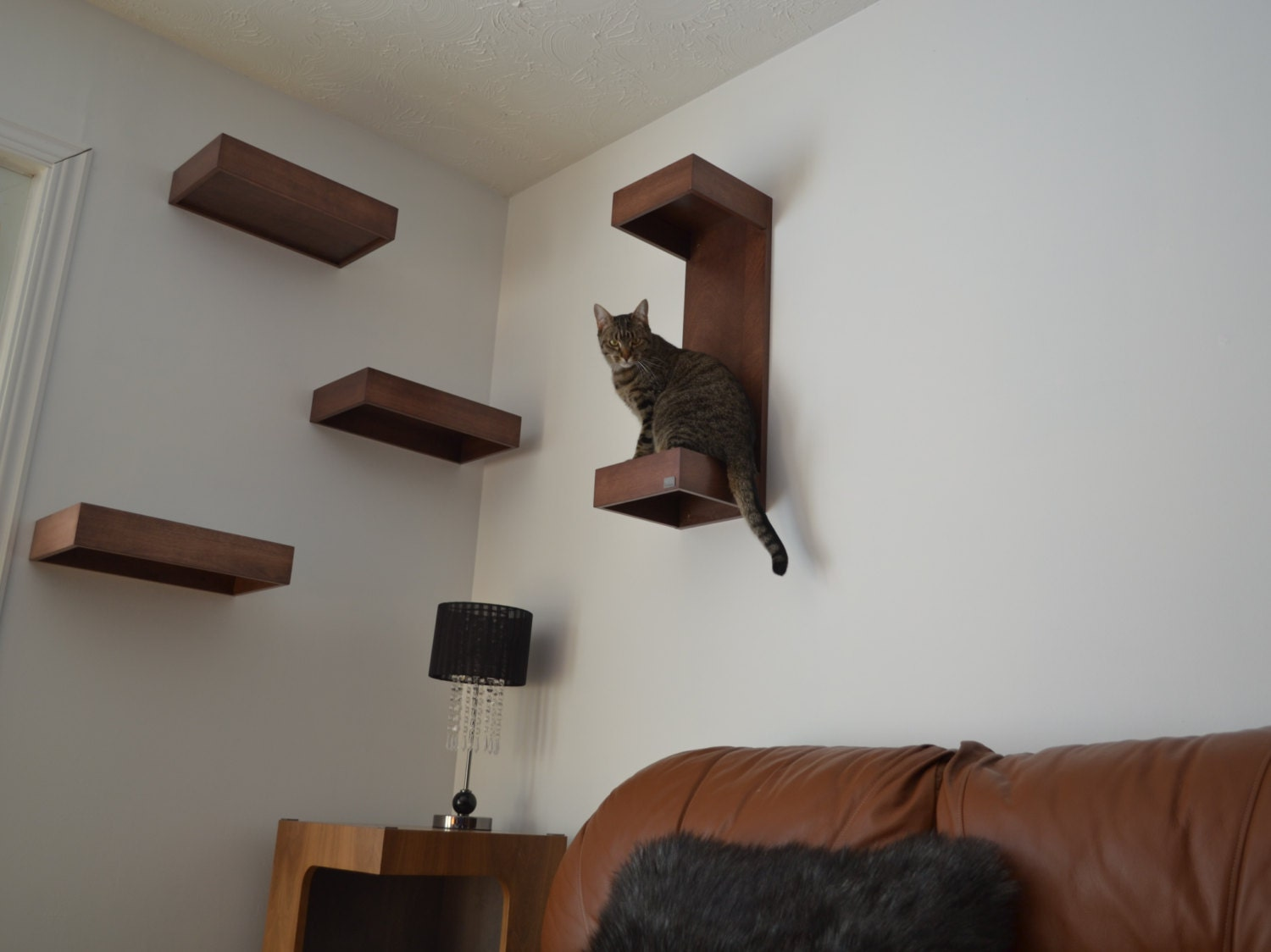 Cat Wall Shelf Cat Wall Perch Package Of Three By Huve