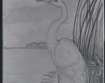 "original artwork, OOAK, graphite ""Heron"""