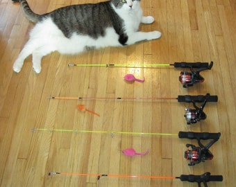 Cat toy fishing pole!  The most fun interactive cat toy ever!