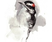 Woodpecker watercolor painting print