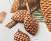 Brown Brass Pinecone Stamping