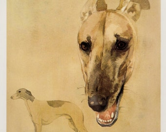 Vintage GREYHOUND Dog Print Cottage Home Decor Dog Gallery Wall Art Gift for Dog Lover Gift 1038
