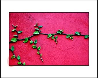 Minimalist Art Print, Pink Decor Download, Botanical Print, Pink Nursury Wall Art, Instant Download, Nature Pink Decor, Living Room Design