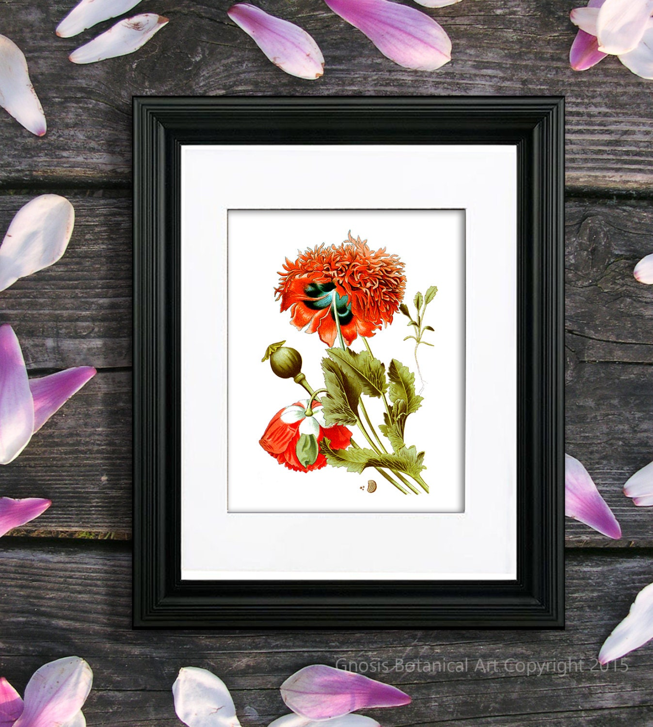 Red Poppies Wall Art Print 6 Red Flowe Wall Decor Natural